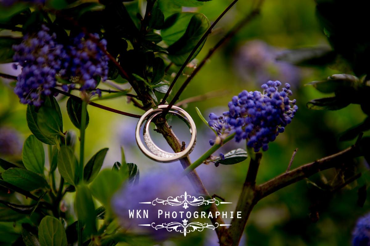 Photographe de mariage à Paris - les alliances des mariés